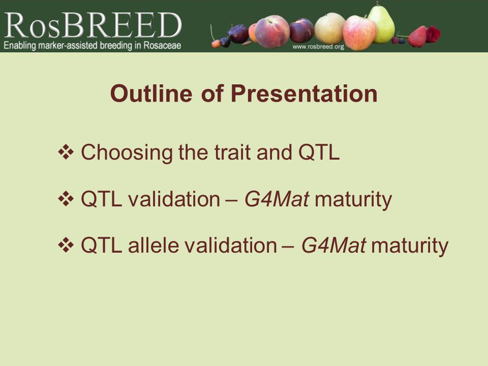 Outline of Presentation Choosing the trait and QTL QTL validation – G4Mat maturity QTL allele validation – G4Mat maturity