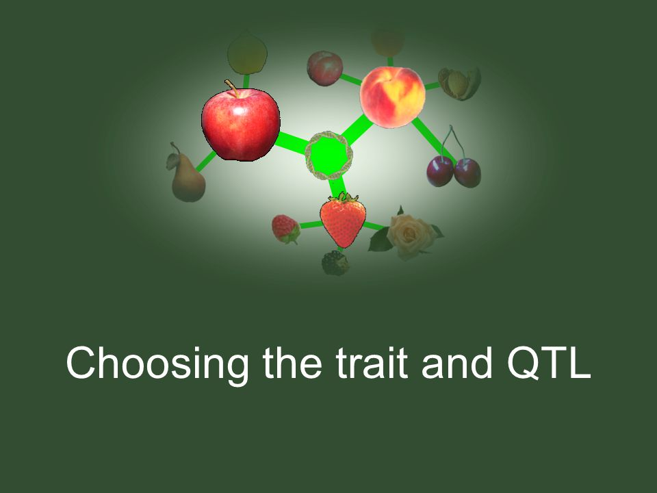 Choosing the trait and QTL