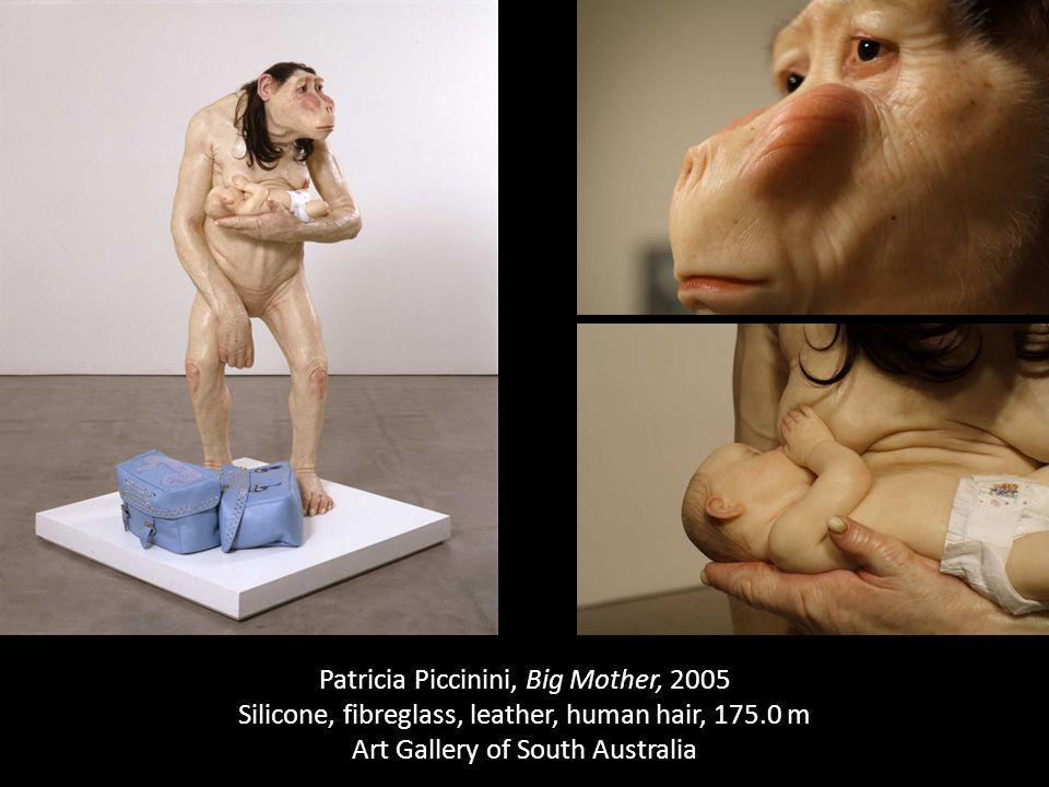 Patricia Piccinini, Big Mother, 2005 Silicone, fibreglass, leather, human hair, 175.0 m Art Gallery of South Australia