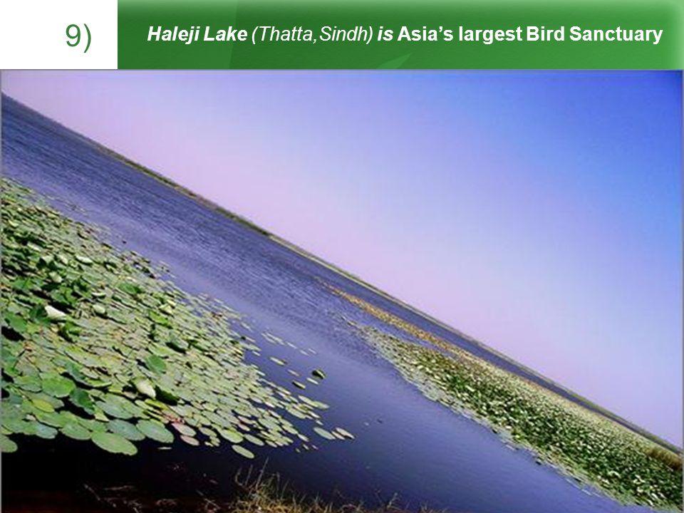9) Haleji Lake (Thatta,Sindh) is Asias largest Bird Sanctuary The heavenly Shandur Lake