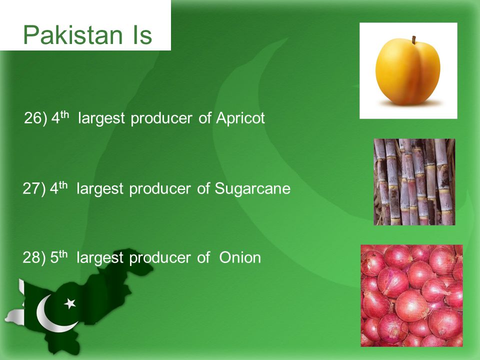 26) 4 th largest producer of Apricot 27) 4 th largest producer of Sugarcane 28) 5 th largest producer of Onion Pakistan Is
