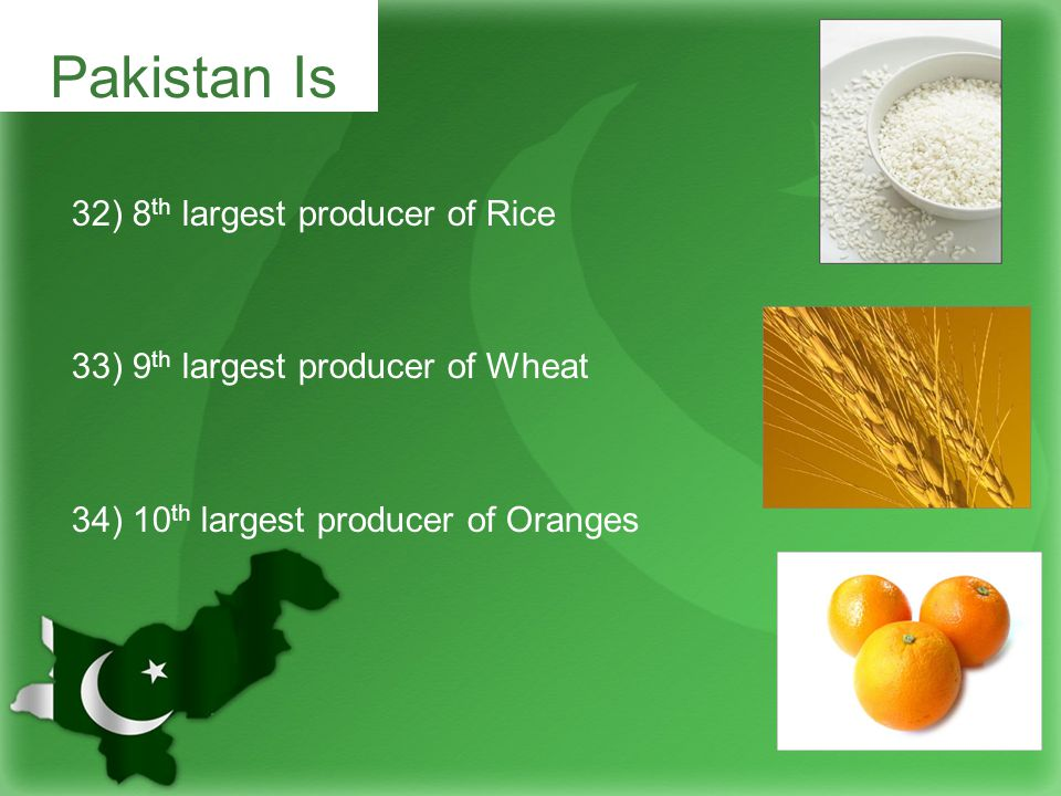 32) 8 th largest producer of Rice 33) 9 th largest producer of Wheat 34) 10 th largest producer of Oranges Pakistan Is