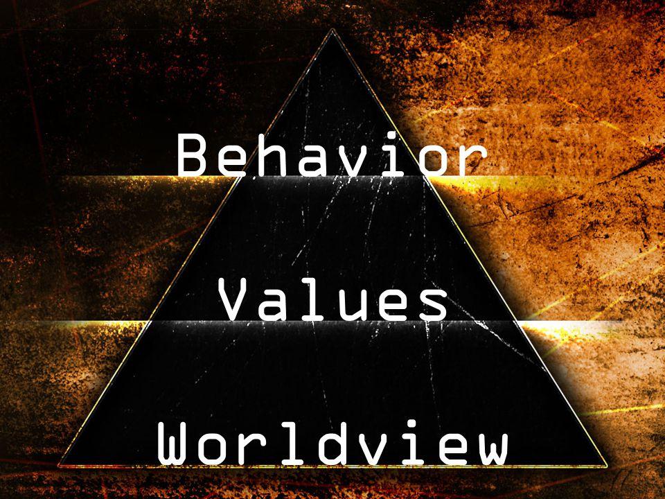 Behavior Values Worldview