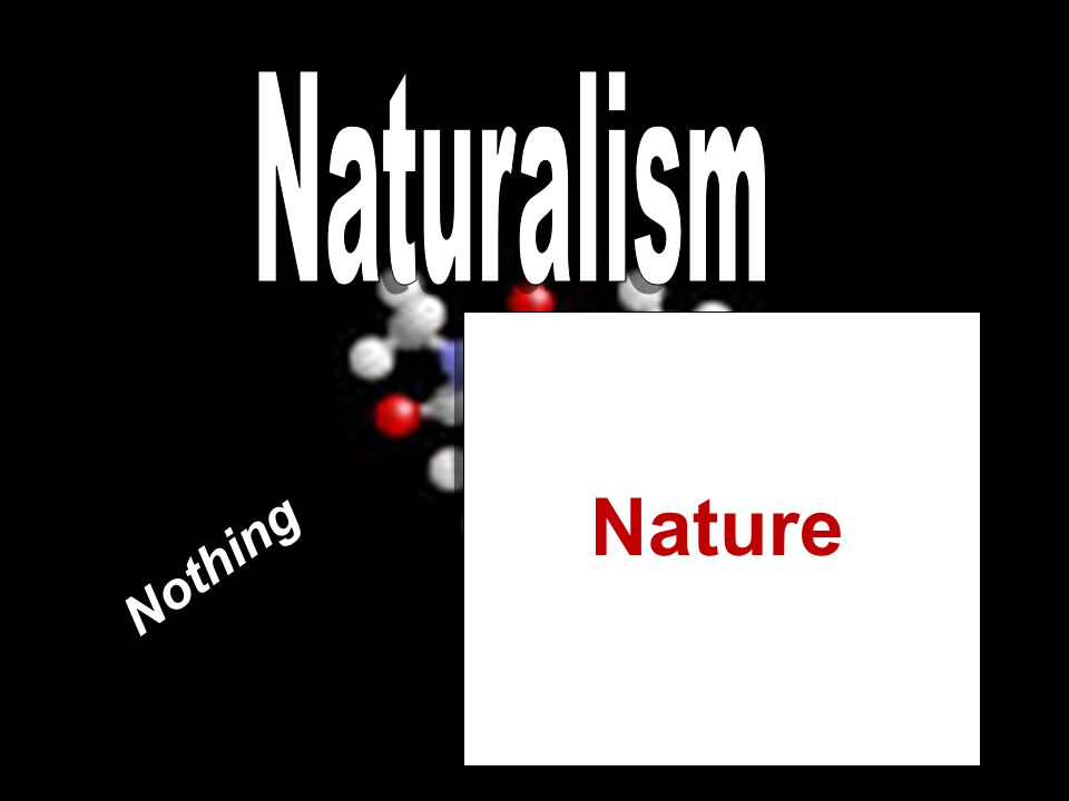 Nothing Nature