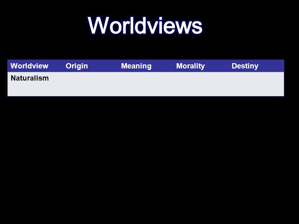 WorldviewOriginMeaningMoralityDestiny Naturalism