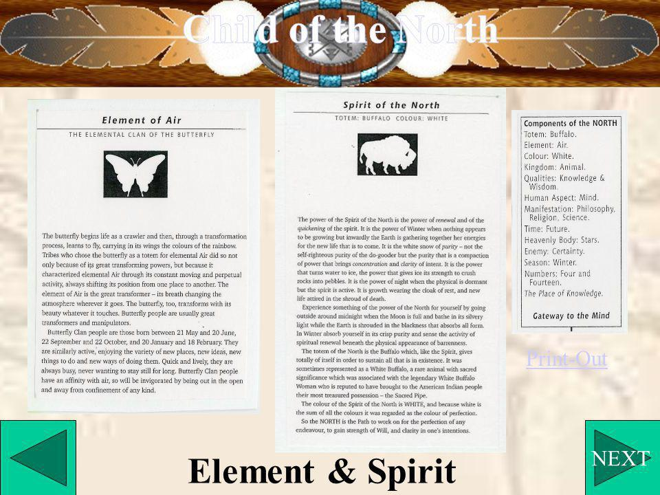 NEXT Element & Spirit Print-Out