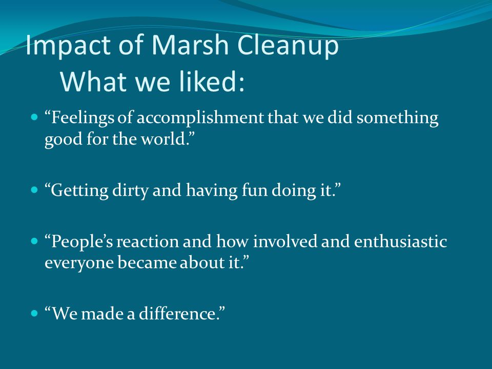 Impact of Marsh Cleanup What we liked: Feelings of accomplishment that we did something good for the world.