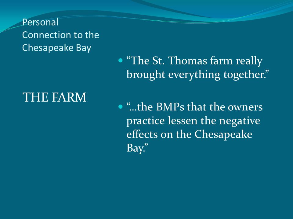 Personal Connection to the Chesapeake Bay THE FARM The St.