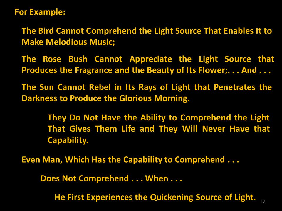 12 For Example: The Bird Cannot Comprehend the Light Source That Enables It to Make Melodious Music; The Rose Bush Cannot Appreciate the Light Source