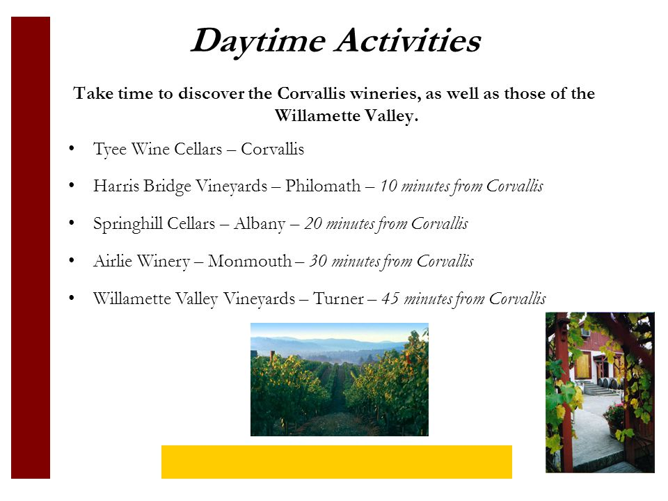 Daytime Activities Take time to discover the Corvallis wineries, as well as those of the Willamette Valley.