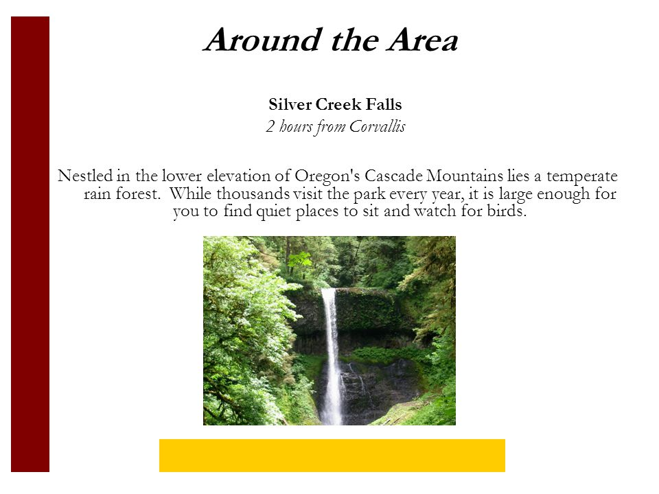 Around the Area Nestled in the lower elevation of Oregon s Cascade Mountains lies a temperate rain forest.