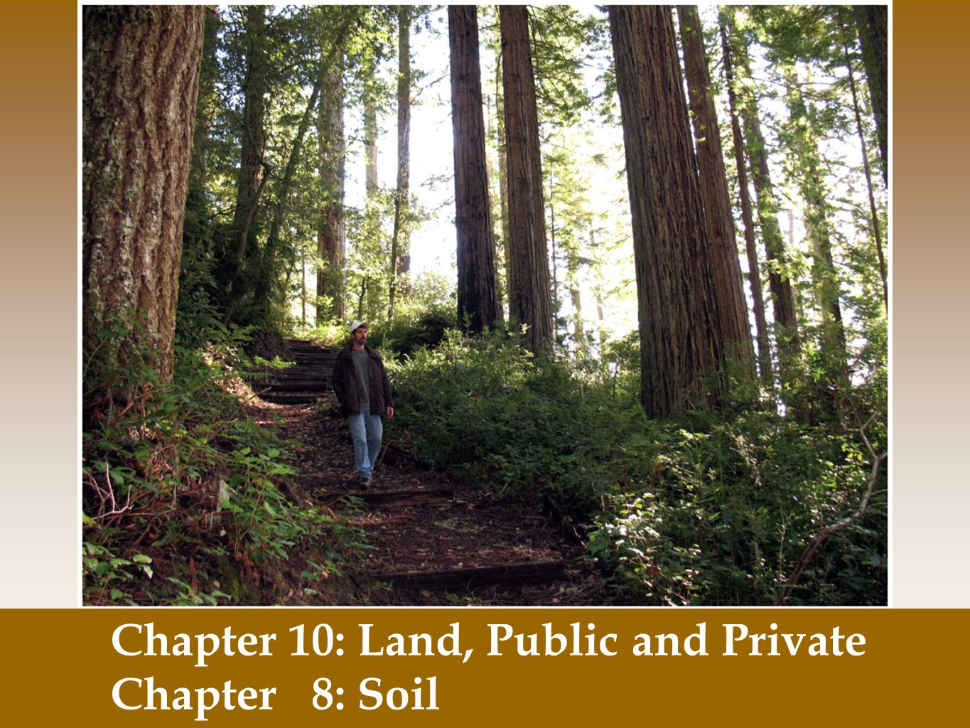 Chapter 10: Land, Public and Private Chapter 8: Soil