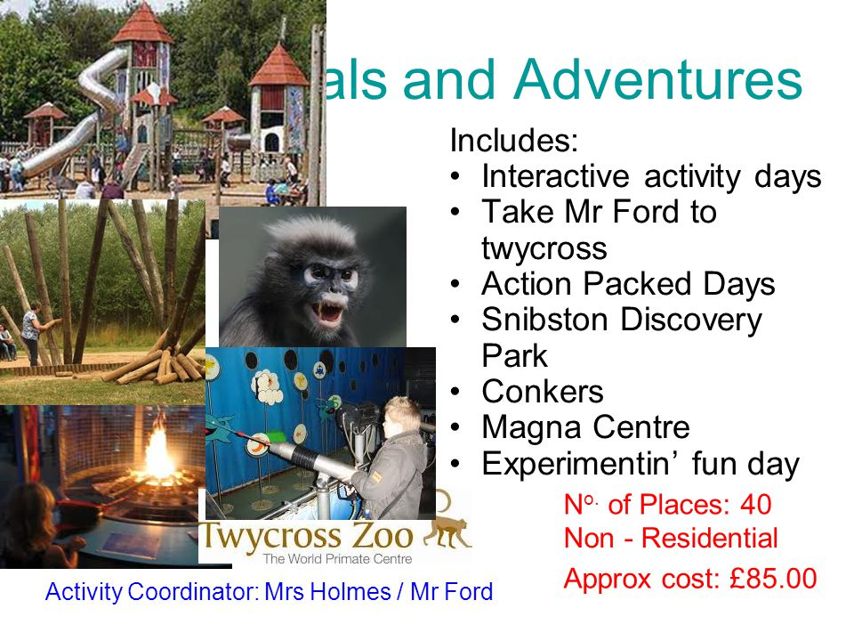 Animals and Adventures Includes: Interactive activity days Take Mr Ford to twycross Action Packed Days Snibston Discovery Park Conkers Magna Centre Ex