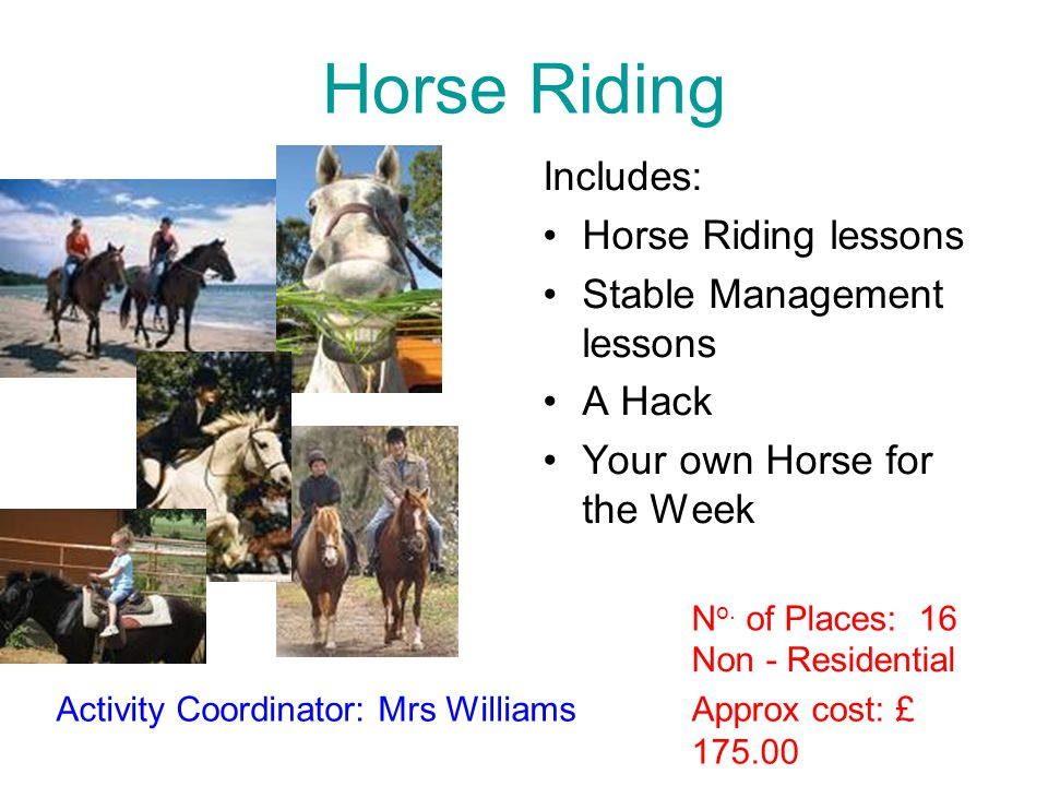 Horse Riding Includes: Horse Riding lessons Stable Management lessons A Hack Your own Horse for the Week Approx cost: £ 175.00 Activity Coordinator: M