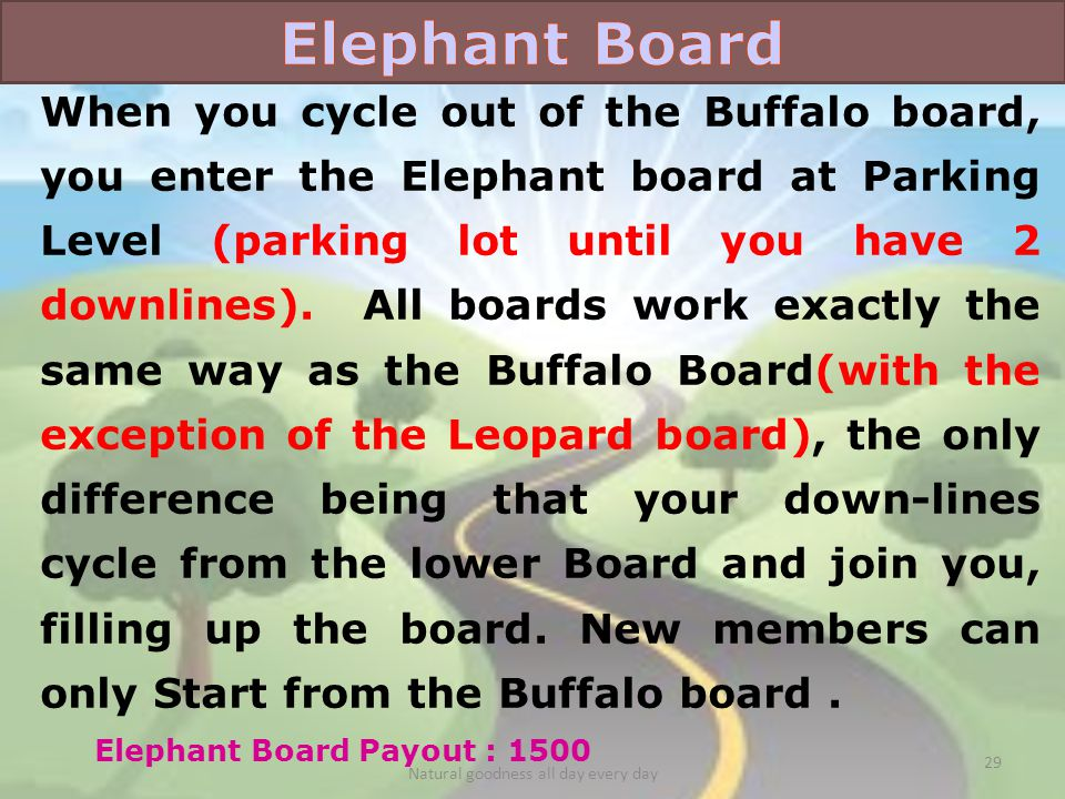 When you cycle out of the Buffalo board, you enter the Elephant board at Parking Level (parking lot until you have 2 downlines).