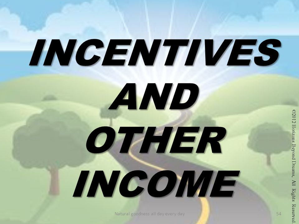 INCENTIVES AND OTHER INCOME ©2012 Horizons Beyond Dreams, All Rights Reserved.