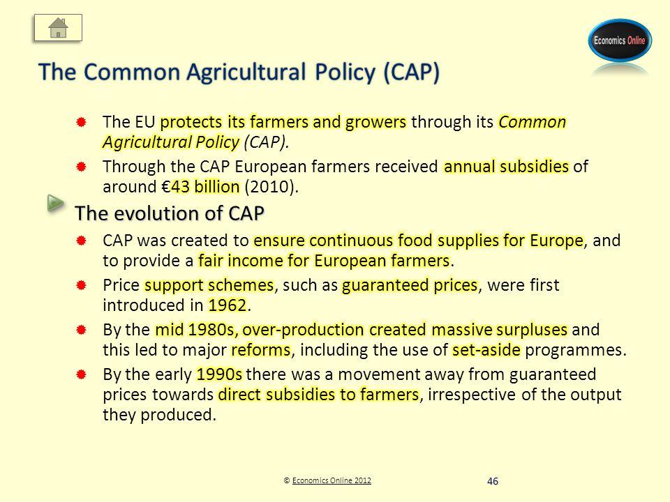 © Economics Online 2012Economics Online 2012 The Common Agricultural Policy (CAP) 46