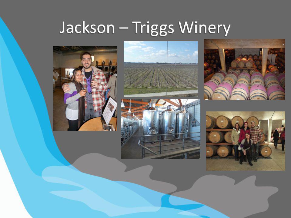 Jackson – Triggs Winery