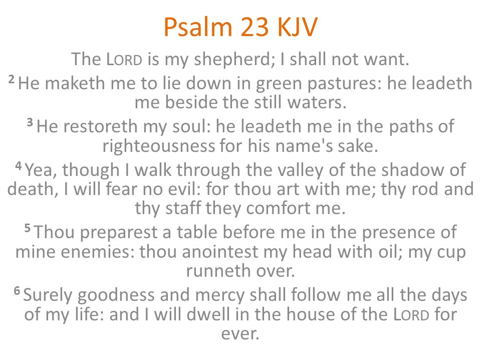 Psalm 23 KJV The L ORD is my shepherd; I shall not want. 2 He maketh me to lie down in green pastures: he leadeth me beside the still waters. 3 He res