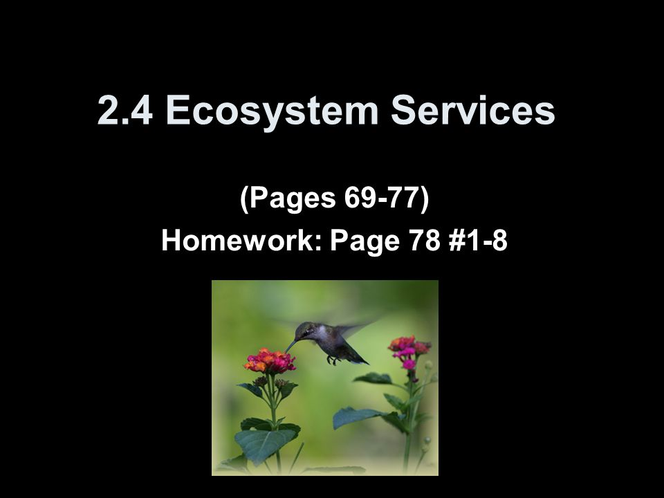 2.4 Ecosystem Services (Pages 69-77) Homework: Page 78 #1-8