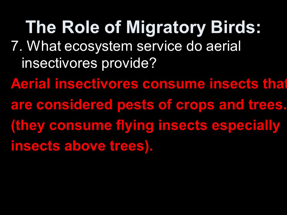 The Role of Migratory Birds: 7. What ecosystem service do aerial insectivores provide? Aerial insectivores consume insects that are considered pests o