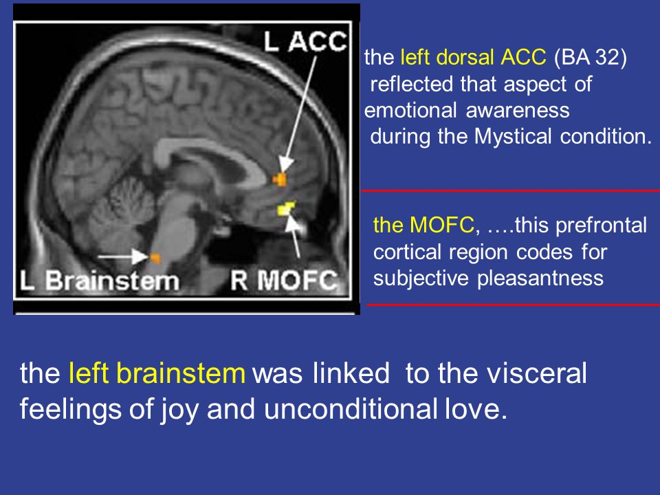 the left brainstem was linked to the visceral feelings of joy and unconditional love.