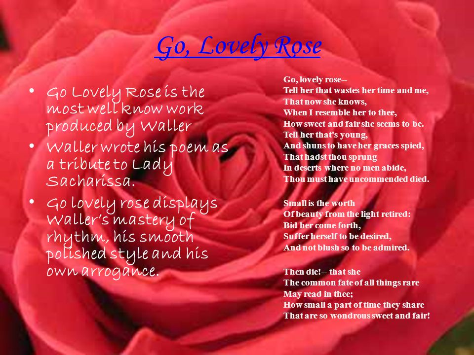 Go, Lovely Rose Go Lovely Rose is the most well know work produced by Waller Waller wrote his poem as a tribute to Lady Sacharissa.