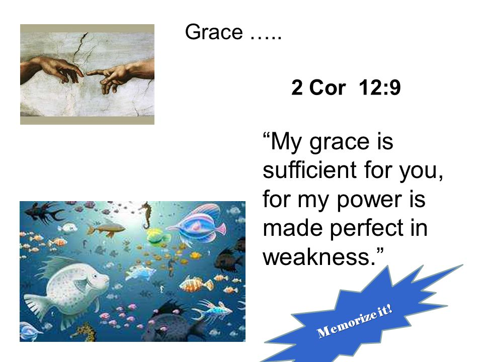 2 Cor 12:9 Grace ….. My grace is sufficient for you, for my power is made perfect in weakness. Memorize it!