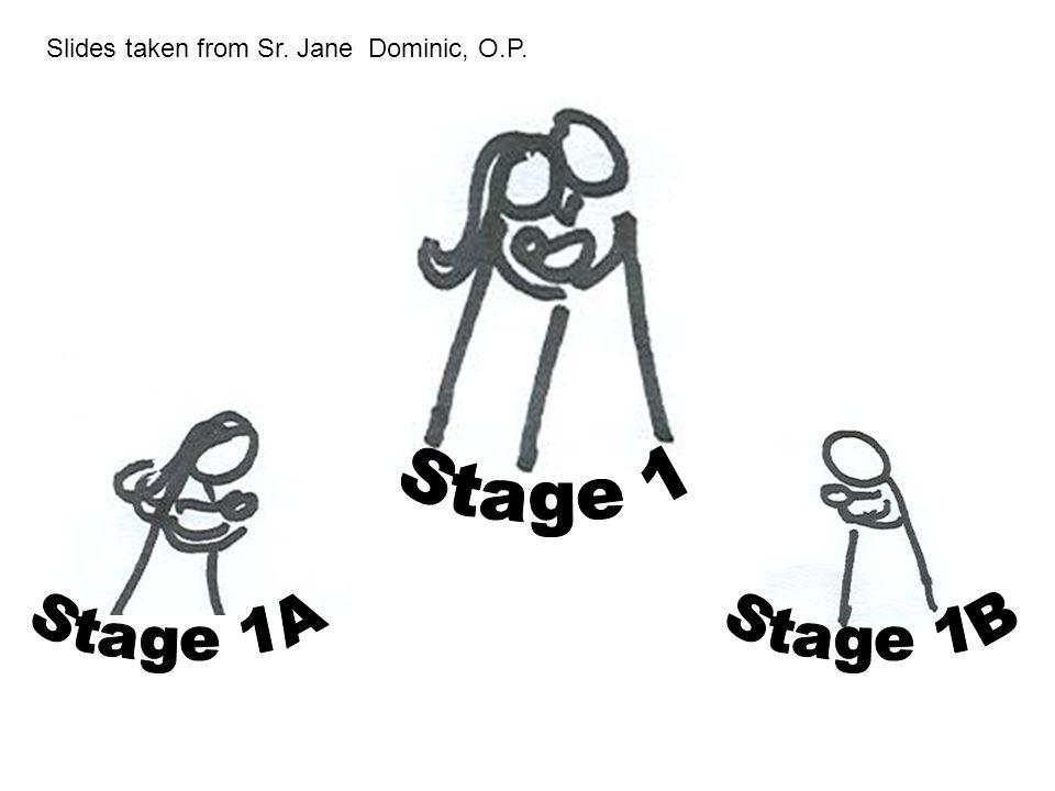 Slides taken from Sr. Jane Dominic, O.P.