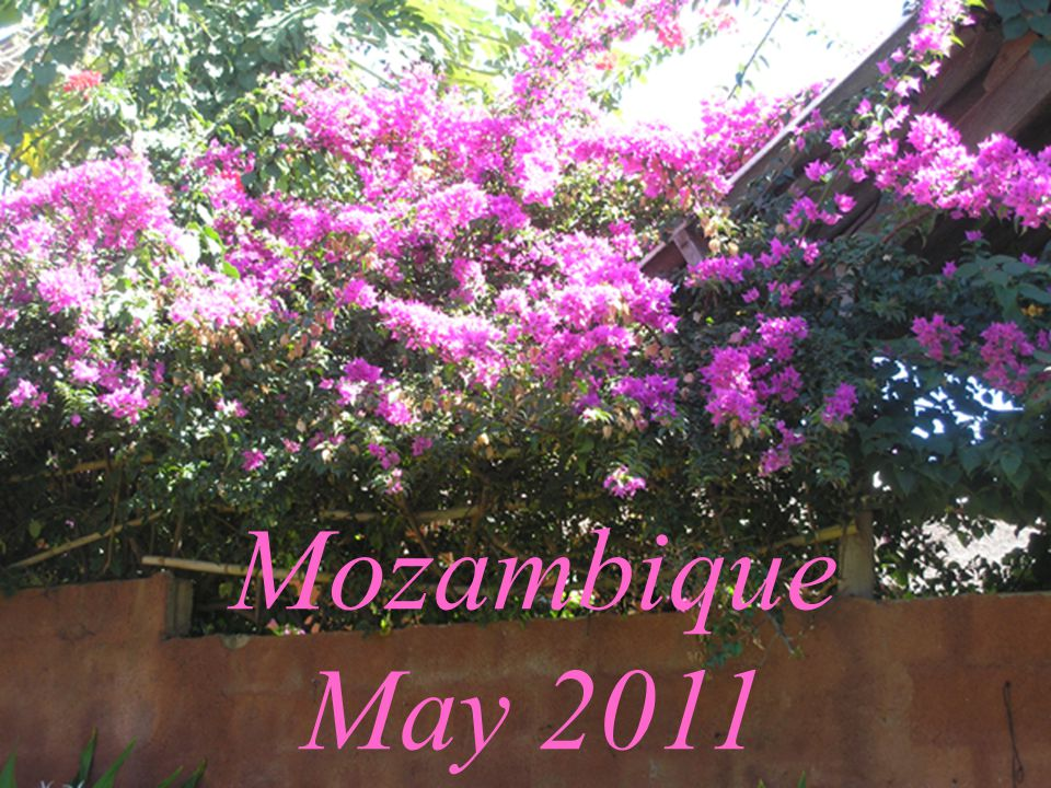 Mozambique May 2011