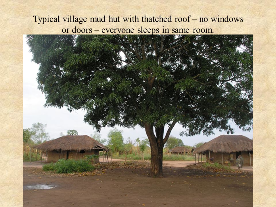 Typical village mud hut with thatched roof – no windows or doors – everyone sleeps in same room.