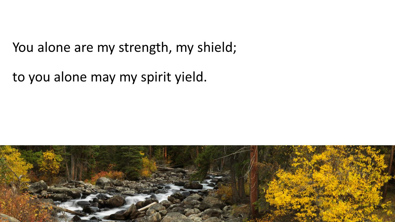 You alone are my strength, my shield; to you alone may my spirit yield.