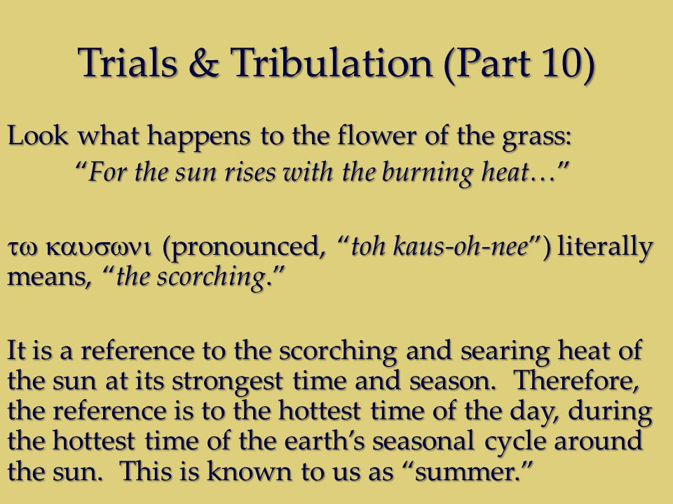 Trials & Tribulation (Part 10) Look what happens to the flower of the grass: For the sun rises with the burning heat…For the sun rises with the burning heat… (pronounced, toh kaus-oh-nee) literally means, the scorching.