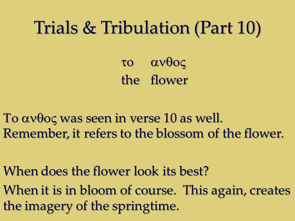 Trials & Tribulation (Part 10) theflower was seen in verse 10 as well.