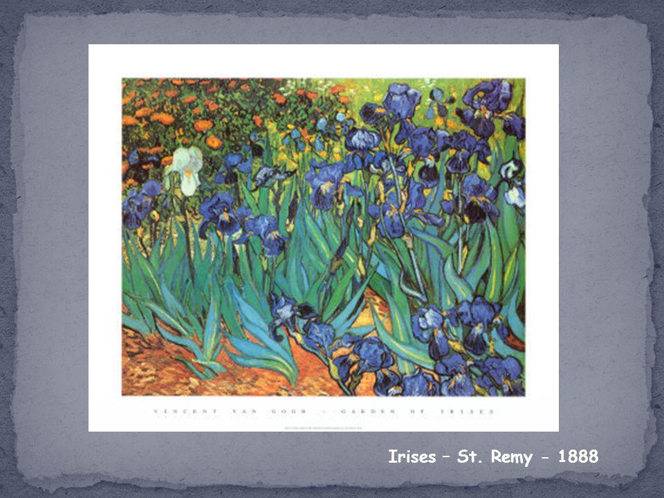 Irises – St. Remy - 1888