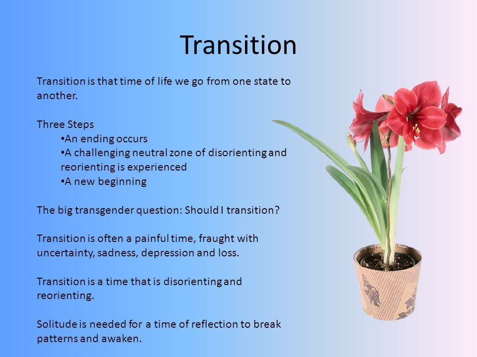 Transition Transition is that time of life we go from one state to another.