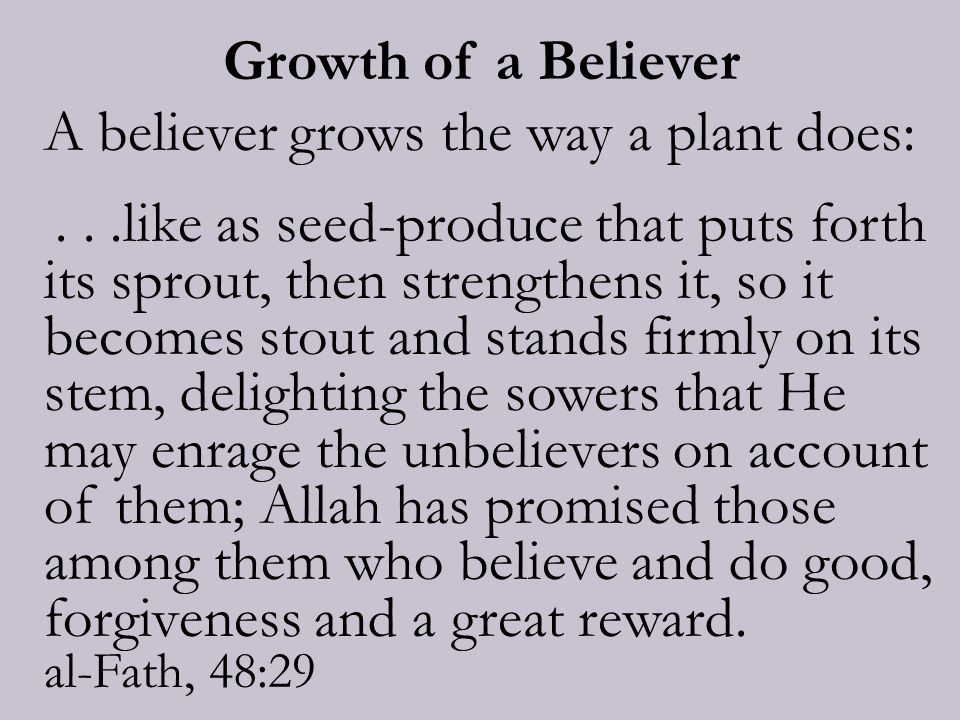 Growth of a Believer A believer grows the way a plant does:...like as seed-produce that puts forth its sprout, then strengthens it, so it becomes stout and stands firmly on its stem, delighting the sowers that He may enrage the unbelievers on account of them; Allah has promised those among them who believe and do good, forgiveness and a great reward.