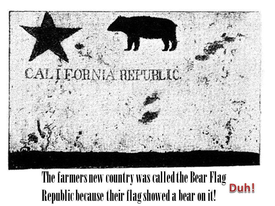 The farmers new country was called the Bear Flag Republic because their flag showed a bear on it!