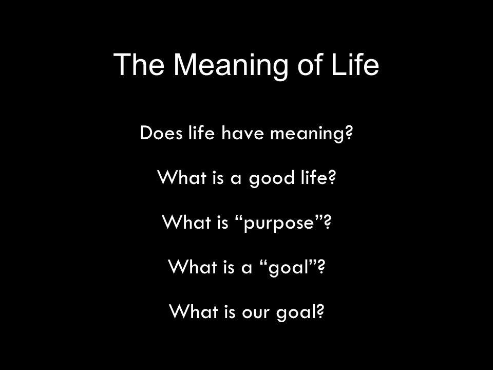 The Meaning of Life Does life have meaning. What is a good life.