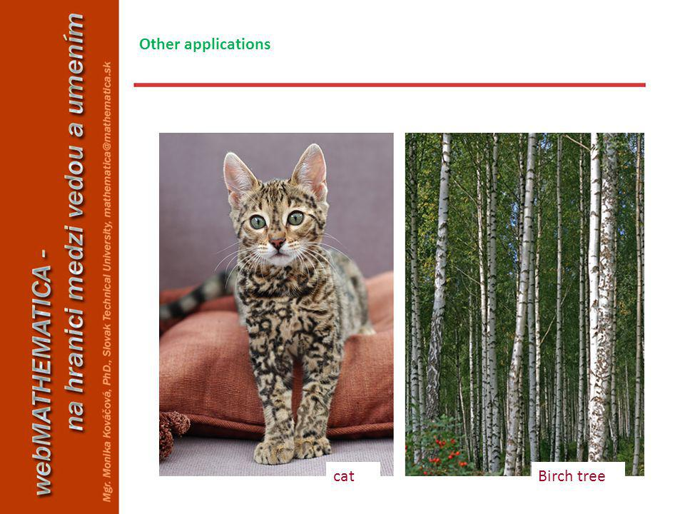 catBirch tree Other applications