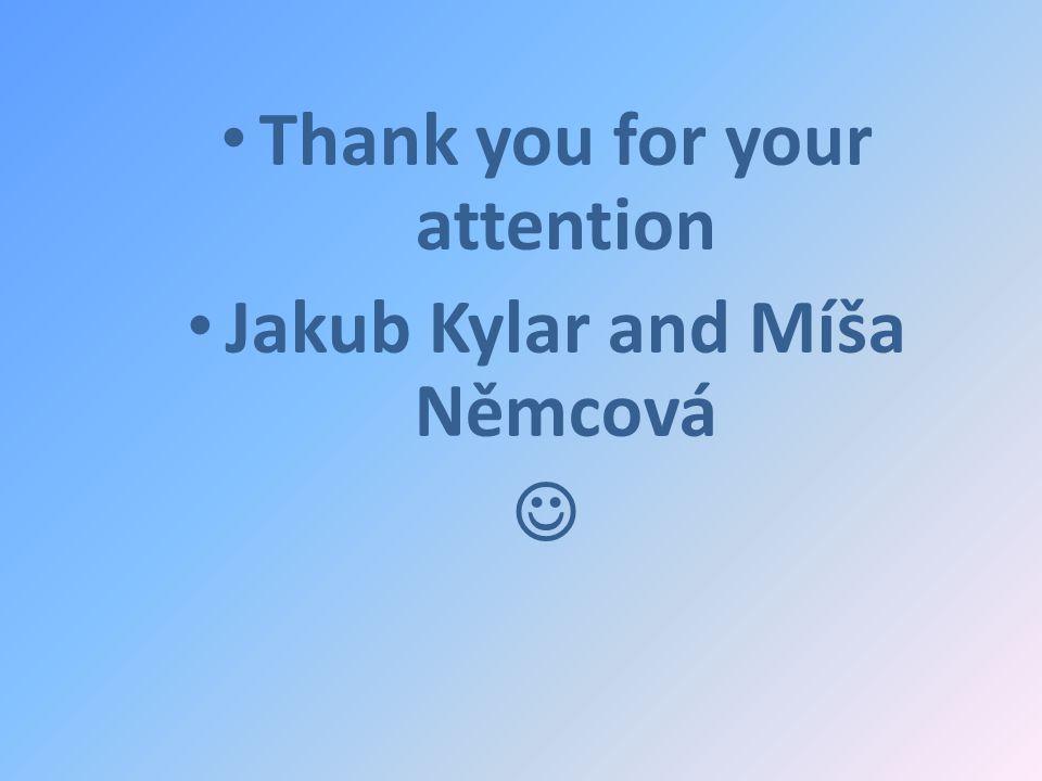 Thank you for your attention Jakub Kylar and Míša Němcová