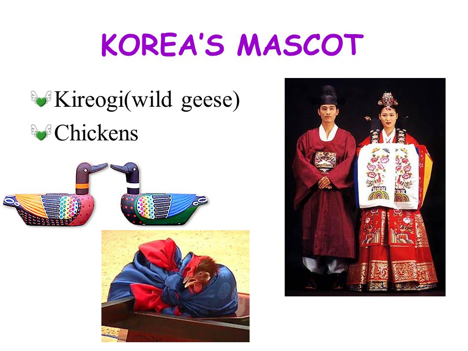 KOREA GROOM Pagi and Cheogori (Traditional Pants and Jacket) Dalryeongps (jacket) Hyungbae (embroidered) Gakdae (belt) Samo and Mokhwa (cap and boots)