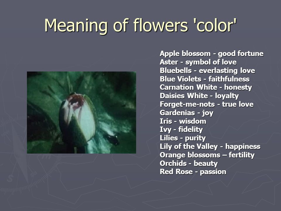 Meaning of flowers 'color' Apple blossom - good fortune Aster - symbol of love Bluebells - everlasting love Blue Violets - faithfulness Carnation Whit