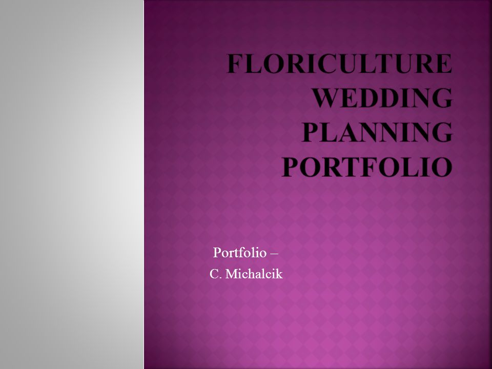 Portfolio – C. Michalcik