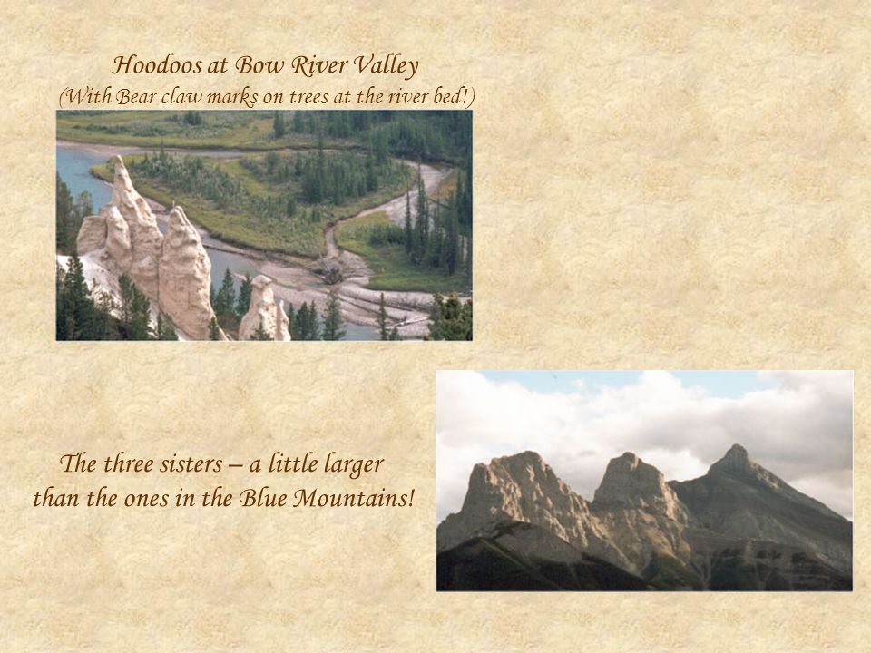 Hoodoos at Bow River Valley (With Bear claw marks on trees at the river bed!) The three sisters – a little larger than the ones in the Blue Mountains!