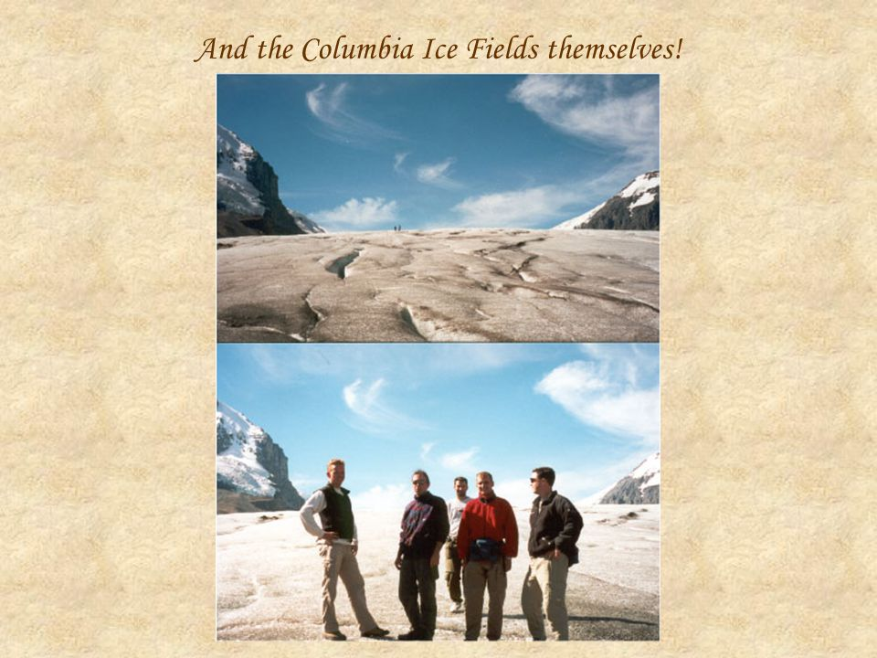 And the Columbia Ice Fields themselves!