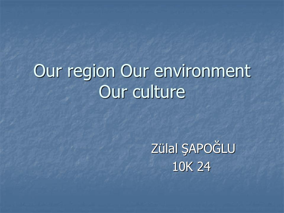 Our region Our environment Our culture Zülal ŞAPOĞLU Zülal ŞAPOĞLU 10K 24 10K 24