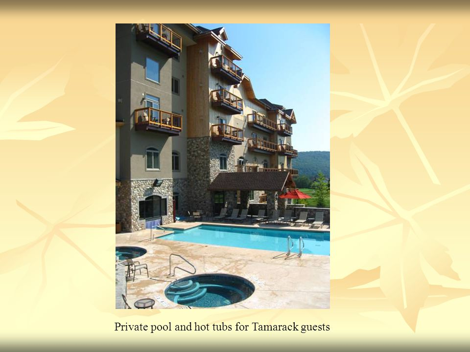 Private pool and hot tubs for Tamarack guests