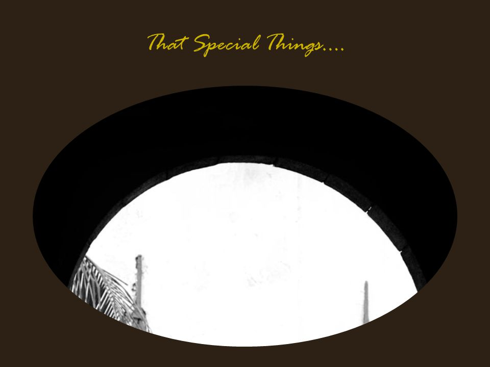 That Special Things….
