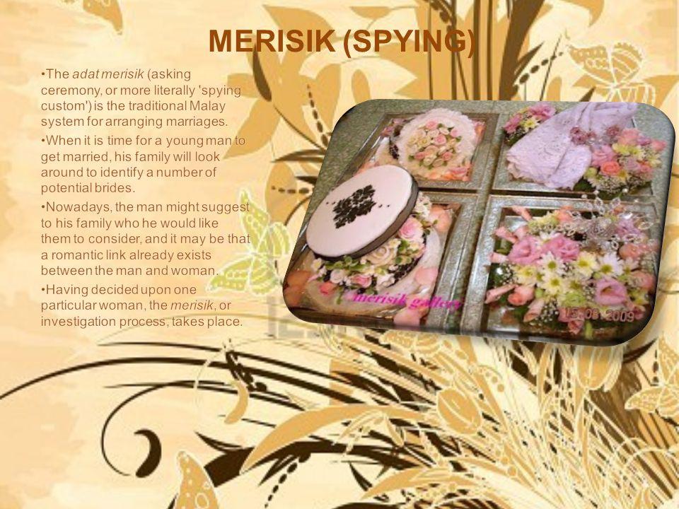 MERISIK (SPYING)